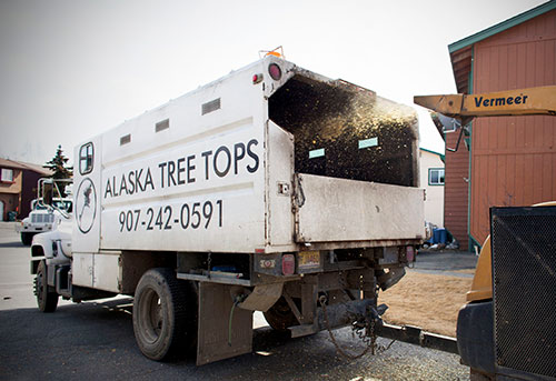 Brush Chipping by Alaska Tree Tops